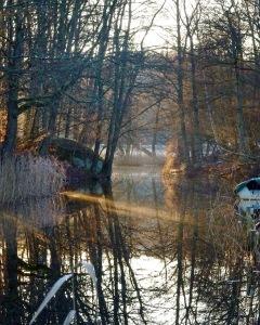 Vinter vid ån